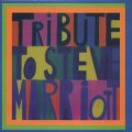 V.A./TRIBUTE TO STEVE MARRIOTT 【7inch】 SPAIN MARIOTT
