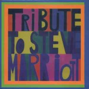 画像1: V.A./TRIBUTE TO STEVE MARRIOTT 【7inch】 SPAIN MARIOTT