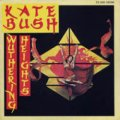 KATE BUSH/WUTHERING HEIGHTS 【7inch】 フランス盤
