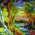 THE APPLES IN STEREO / FUN TRICK NOISEMAKER 【LP】 US spinART