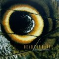 DEAD CAN DANCE / A PASSAGE IN TIME 【CD】 US RYKO