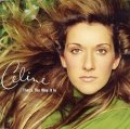 CELINE DION / THAT'S THE WAY IT IS 【12inch】 イタリア盤