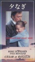 夕なぎ セザールとロザリー 【VHS】 クロード・ソーテ 1972年 イヴ・モンタン ロミー・シュナイダー サミー・フレイ