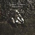 JULES SHEAR / HEALING BONES 【CD】 US盤 ISLAND ORG.