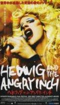 ヘドウィグ・アンド・アングリーインチ 【VHS】 2001年 ジョン・キャメロン・ミッチェル監督