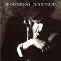 THE WATERBOYS/THIS IS THE SEA 【CD】 ドイツ盤 ISLAND