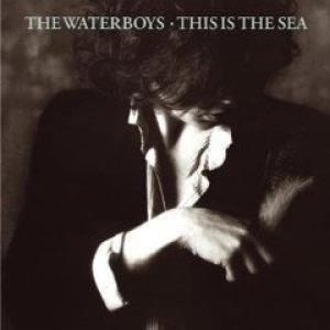 ザ・ウォーターボーイズ:THE WATERBOYS/THIS IS THE SEA 【CD】 ドイツ盤 ISLAND