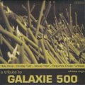 V.A./A TRIBUTE TO GALAXIE 500 【7inch】 SPAIN LTD. GREEN VINYL