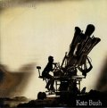 KATE BUSH/CLOUDBUSTING 【12inch】UK盤