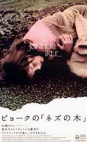 画像1: ビョークの「ネズの木」 グリム童話より 【VHS】 1986年 ニーツチュカ・キーン ビョーク アイスランド映画