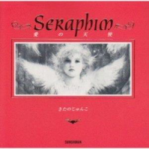 『セラフィム 愛の天使』 作・絵:きたのじゅんこ 新書館